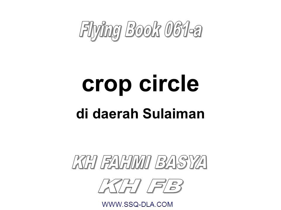 Ketika terjadi crop circle di daerah Sulaiman, saya berada di Pusat Penelitian Borobudur menyelesaikan Ekspedisi Sains Quantum Quran angkatan ke-14 Arupa Dhatu ini adalah Stone Circle yang dipindah dari Istana Ratu Boko dalam sekejab oleh seorang berilmu Kitab di zaman Sulaiman.