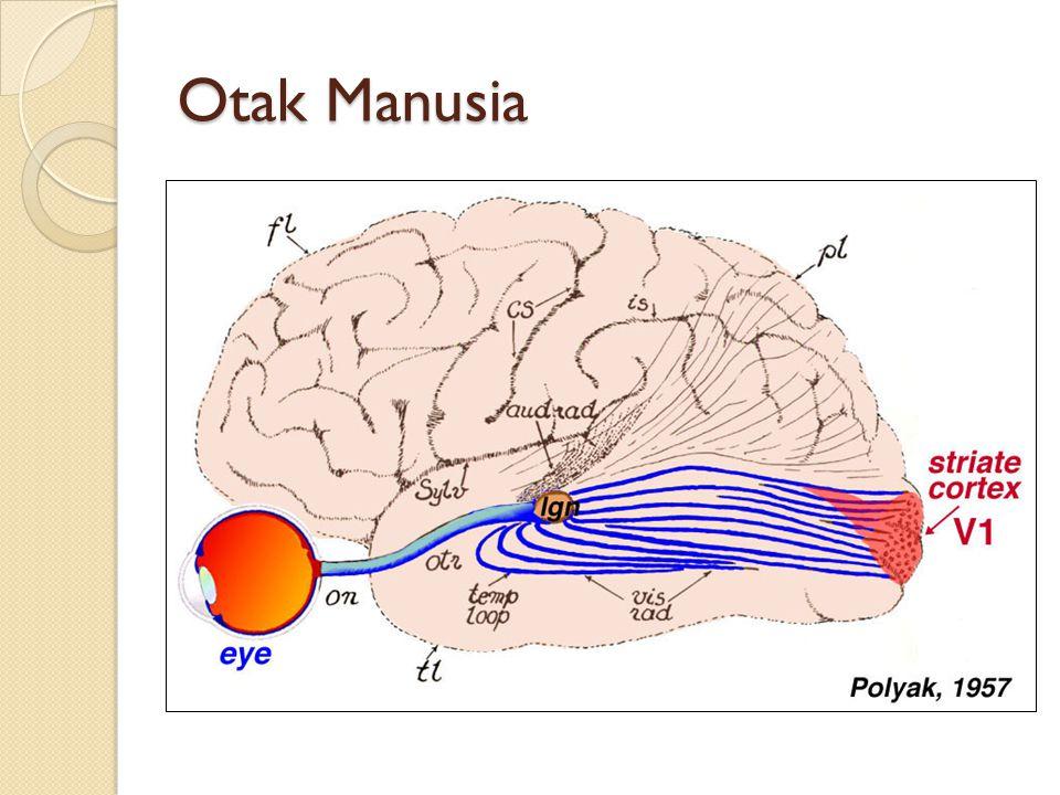 Kemampuan manusia dalam memproses informasi, mengenal wajah, tulisan, dsb.