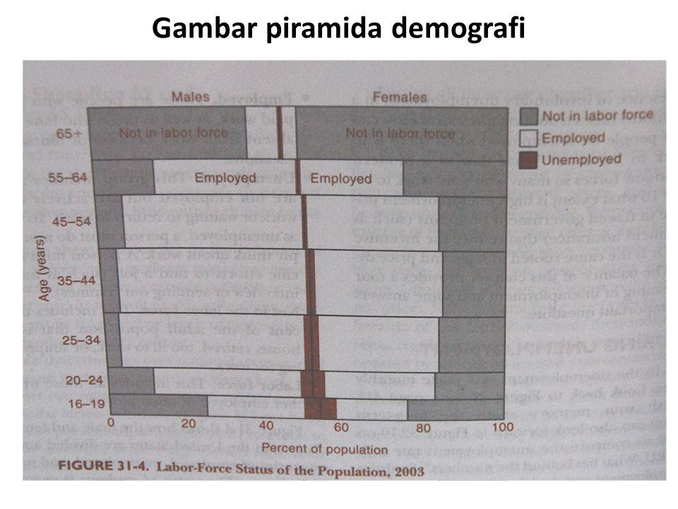 Gambar piramida demografi