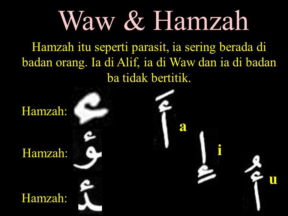 Waw & Hamzah Hamzah itu seperti parasit, ia sering berada di badan orang.