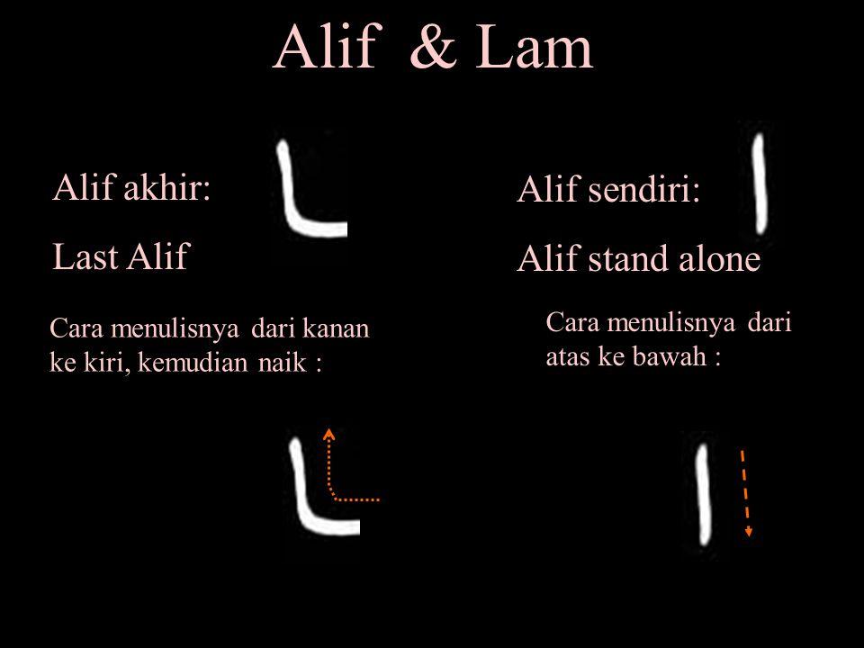 Lam awal Lam sendiri Lam tengah Lam akhir Cara menulisnya Alif Akhir Alif sendiri bedakan antara keduanya Bandingkan Lam dan Alif Alif hanya ada dua macam Hafal dan latih menulis bentuk- bentuk ini 1 2 1 2