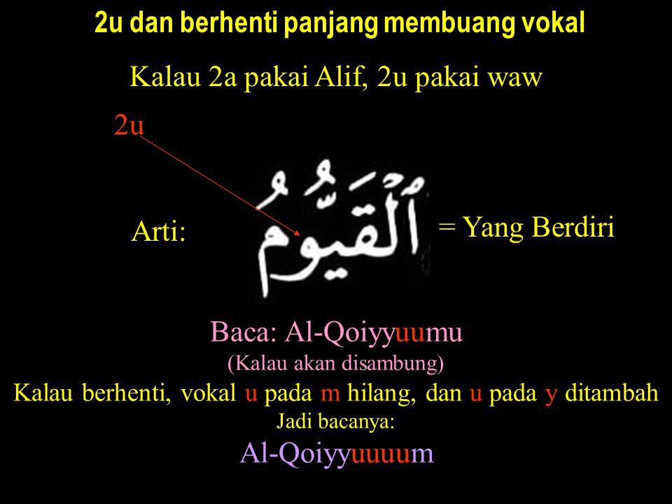 2u dan berhenti panjang membuang vokal Kalau 2a pakai Alif, 2u pakai waw Arti: Baca: Al-Qoiyyuumu (Kalau akan disambung) Kalau berhenti, vokal u pada