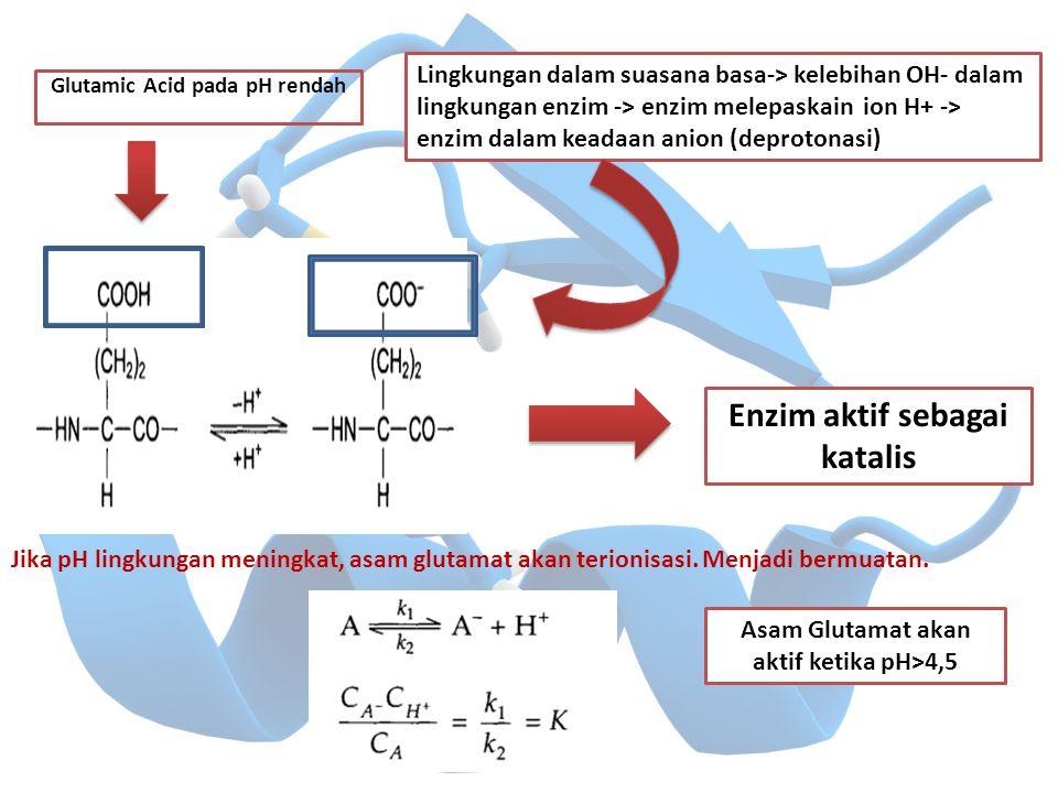 Glutamic Acid pada pH rendah Jika pH lingkungan meningkat, asam glutamat akan terionisasi. Menjadi bermuatan. Lingkungan dalam suasana basa-> kelebiha