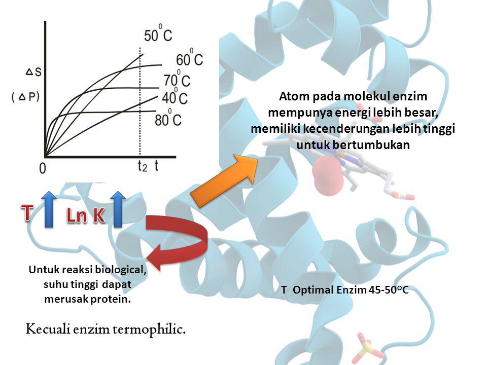 Kecuali enzim termophilic. Untuk reaksi biological, suhu tinggi dapat merusak protein. T Optimal Enzim 45-50 ° C Atom pada molekul enzim mempunya ener