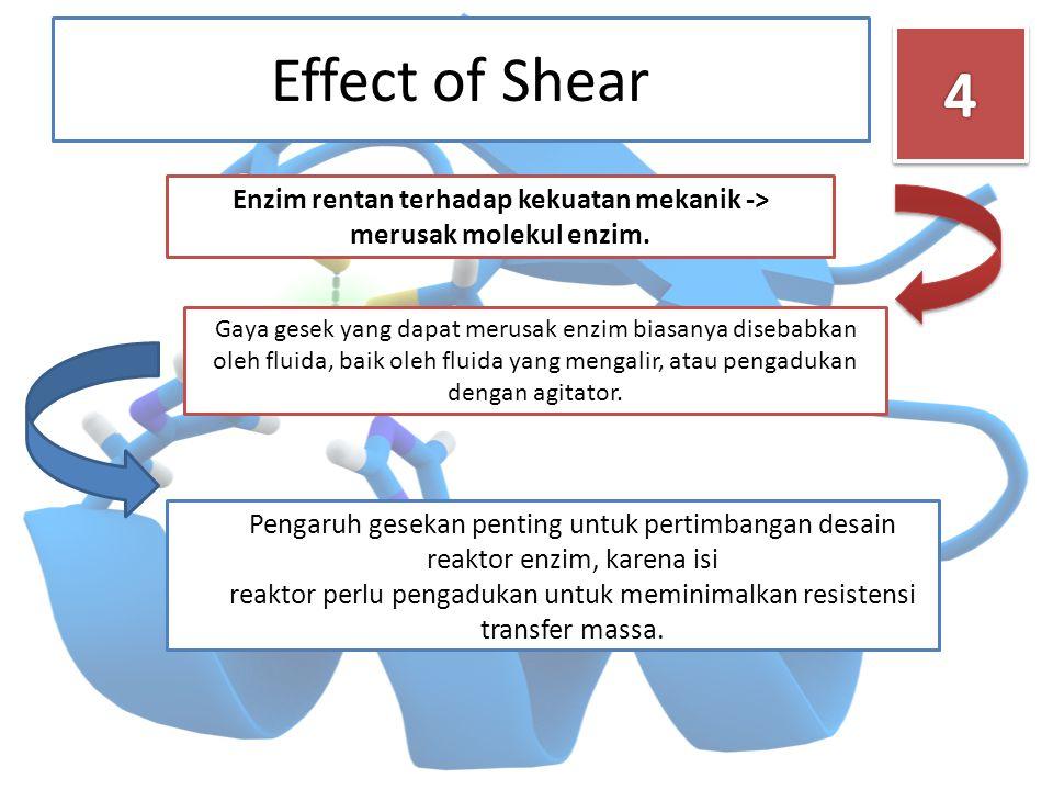 Effect of Shear Pengaruh gesekan penting untuk pertimbangan desain reaktor enzim, karena isi reaktor perlu pengadukan untuk meminimalkan resistensi tr