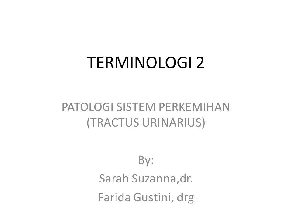 TERMINOLOGI 2 PATOLOGI SISTEM PERKEMIHAN (TRACTUS URINARIUS) By: Sarah Suzanna,dr. Farida Gustini, drg