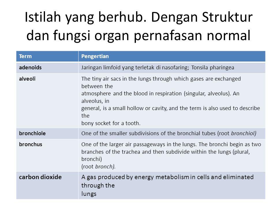 Istilah yang berhub. Dengan Struktur dan fungsi organ pernafasan normal TermPengertian adenoidsJaringan limfoid yang terletak di nasofaring; Tonsila p