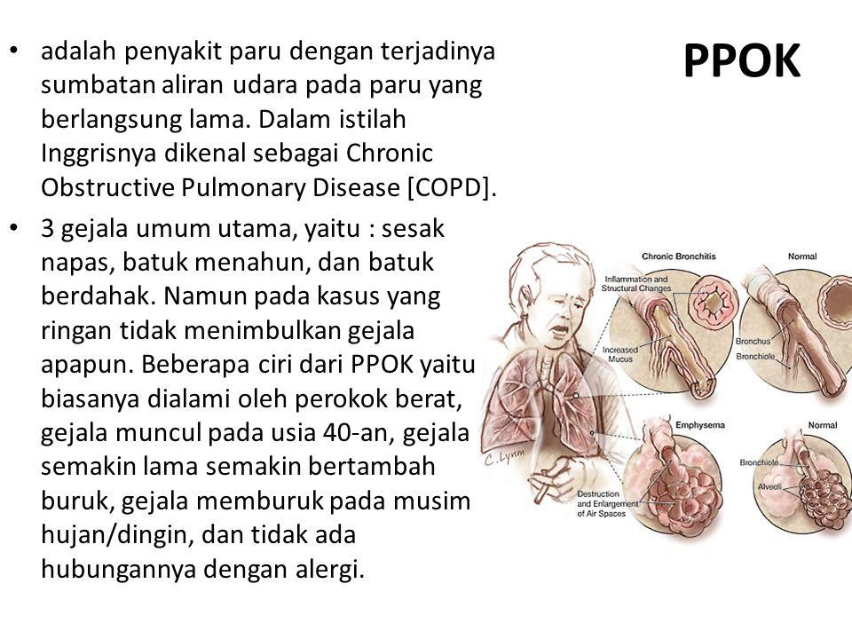 PPOK adalah penyakit paru dengan terjadinya sumbatan aliran udara pada paru yang berlangsung lama. Dalam istilah Inggrisnya dikenal sebagai Chronic Ob
