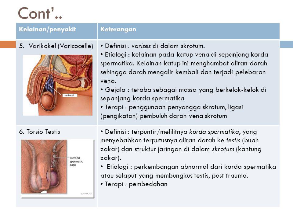 Cont'.. Kelainan/penyakitKeterangan 5. Varikokel (Varicocelle) Definisi : varises di dalam skrotum. Etiologi : kelainan pada katup vena di sepanjang k