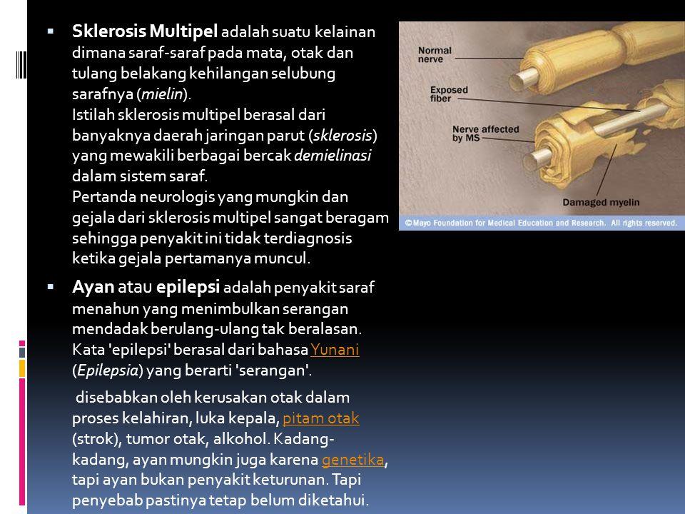  Sklerosis Multipel adalah suatu kelainan dimana saraf-saraf pada mata, otak dan tulang belakang kehilangan selubung sarafnya (mielin). Istilah skler