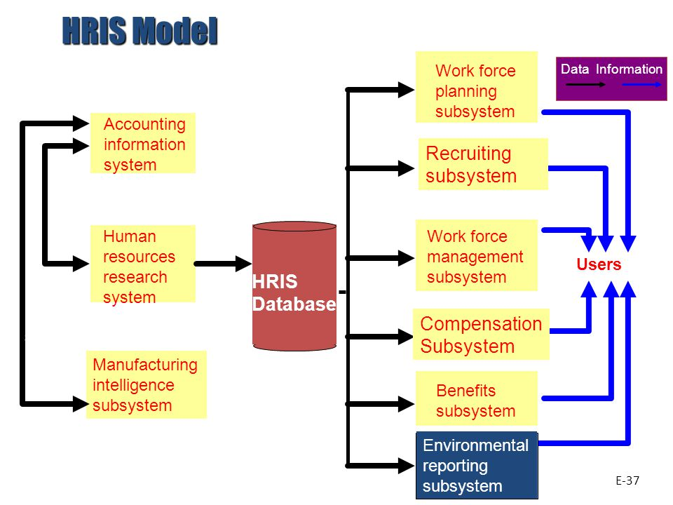 Accounting information system Human resources research system Manufacturing intelligence subsystem Work force planning subsystem Work force management