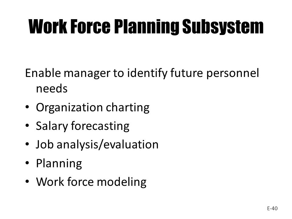Work Force Planning Subsystem Enable manager to identify future personnel needs Organization charting Salary forecasting Job analysis/evaluation Planning Work force modeling E-40