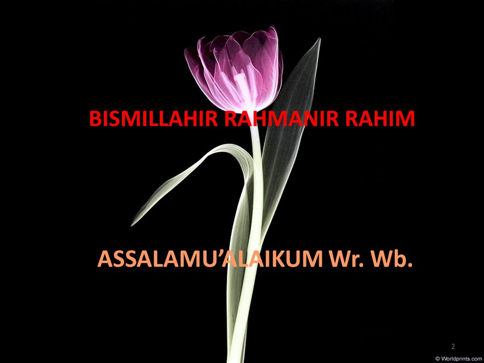 BISMILLAHIR RAHMANIR RAHIM ASSALAMU'ALAIKUM Wr. Wb. 2