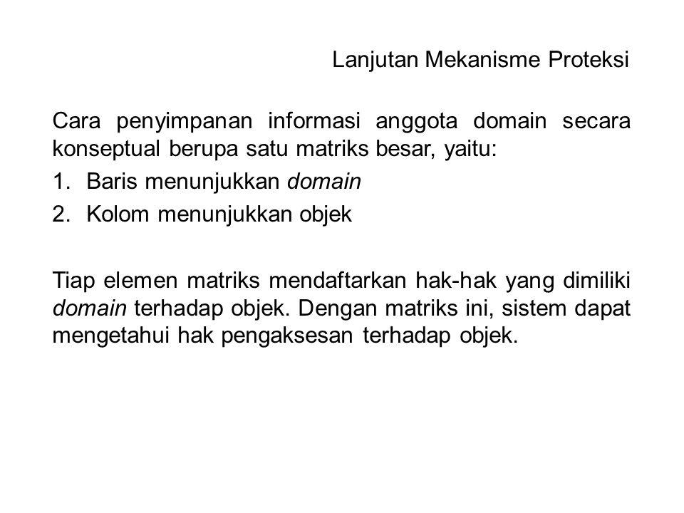 Cara penyimpanan informasi anggota domain secara konseptual berupa satu matriks besar, yaitu: 1.Baris menunjukkan domain 2.Kolom menunjukkan objek Tia