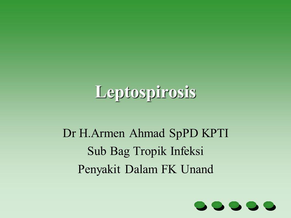 Komplikasi leptospirosis Pada hati : kekuningan yang terjadi pada hari ke 4 dan ke 6 Pada ginjal : gagal ginjal yang dapat menyebabkan kematian.
