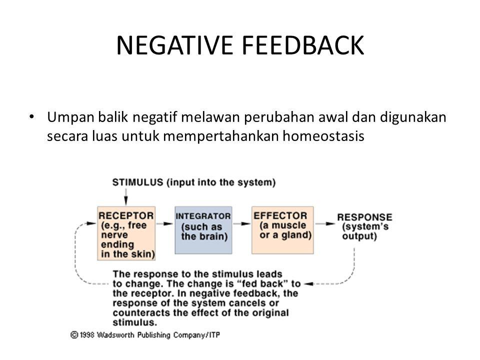 NEGATIVE FEEDBACK Umpan balik negatif melawan perubahan awal dan digunakan secara luas untuk mempertahankan homeostasis