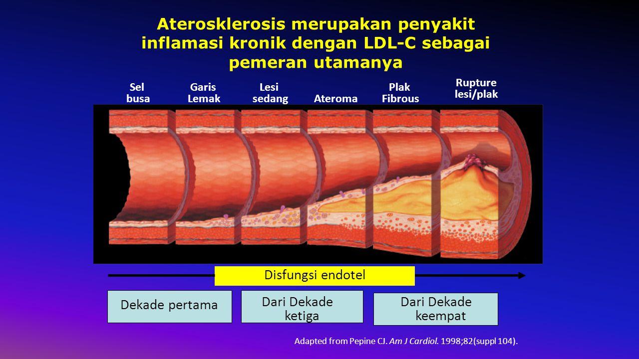 Sel busa Garis Lemak Lesi sedangAteroma Plak Fibrous Rupture lesi/plak Adapted from Pepine CJ.