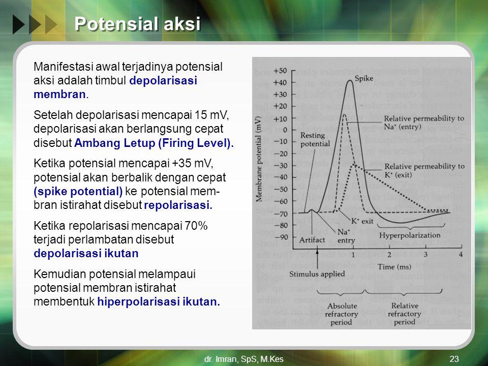 dr. Imran, SpS, M.Kes23 Potensial aksi Manifestasi awal terjadinya potensial aksi adalah timbul depolarisasi membran. Setelah depolarisasi mencapai 15