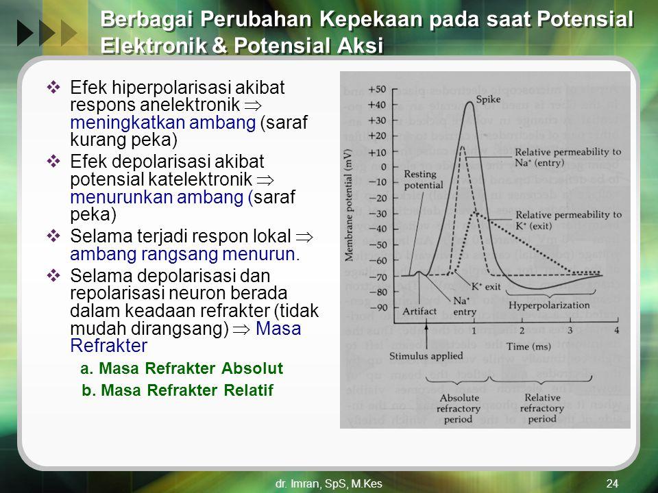 dr. Imran, SpS, M.Kes24 Berbagai Perubahan Kepekaan pada saat Potensial Elektronik & Potensial Aksi  Efek hiperpolarisasi akibat respons anelektronik