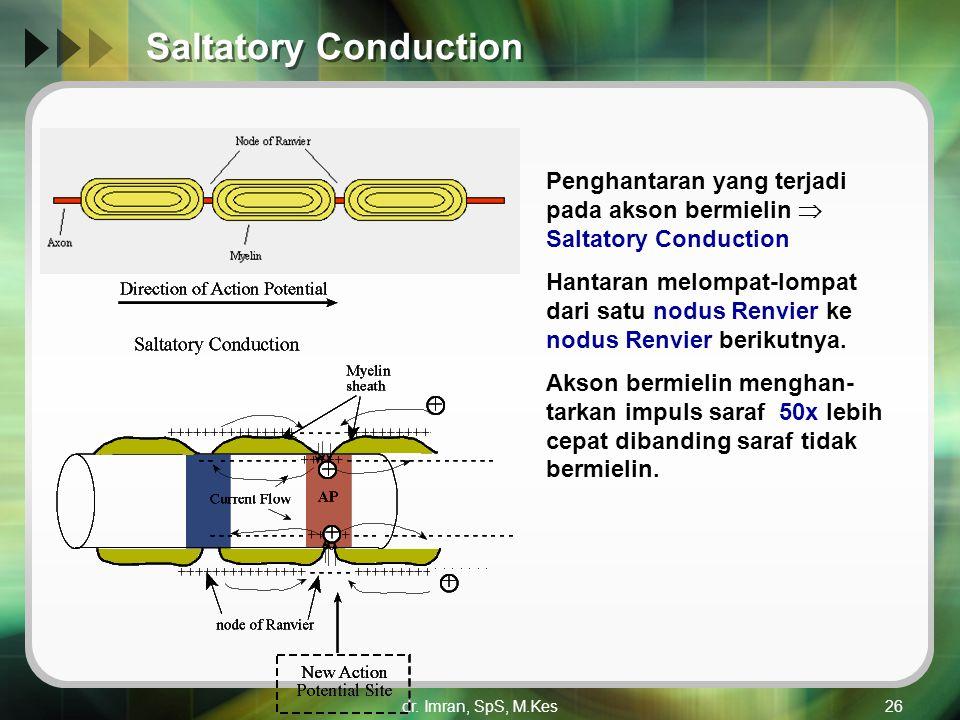 dr. Imran, SpS, M.Kes26 Saltatory Conduction Penghantaran yang terjadi pada akson bermielin  Saltatory Conduction Hantaran melompat-lompat dari satu
