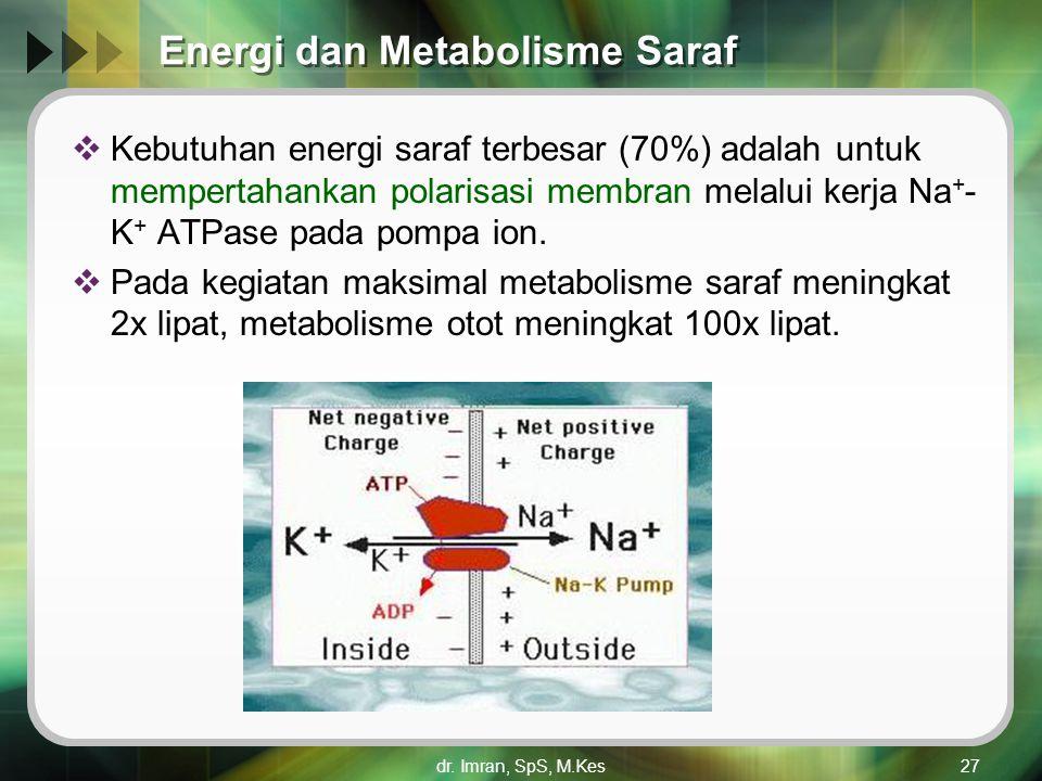 dr. Imran, SpS, M.Kes27 Energi dan Metabolisme Saraf  Kebutuhan energi saraf terbesar (70%) adalah untuk mempertahankan polarisasi membran melalui ke