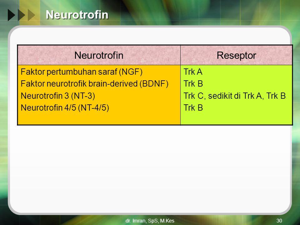 dr. Imran, SpS, M.Kes30 Neurotrofin Reseptor Faktor pertumbuhan saraf (NGF) Faktor neurotrofik brain-derived (BDNF) Neurotrofin 3 (NT-3) Neurotrofin 4