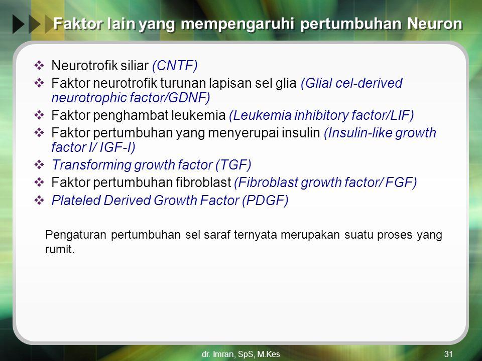dr. Imran, SpS, M.Kes31 Faktor lain yang mempengaruhi pertumbuhan Neuron  Neurotrofik siliar (CNTF)  Faktor neurotrofik turunan lapisan sel glia (Gl