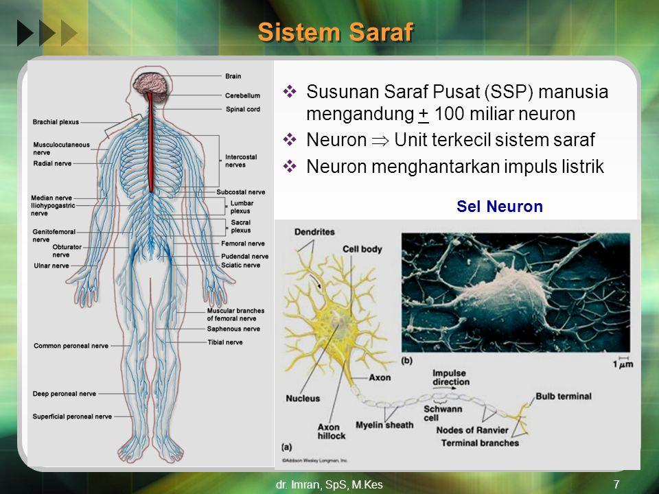 dr. Imran, SpS, M.Kes7 Sistem Saraf  Susunan Saraf Pusat (SSP) manusia mengandung + 100 miliar neuron  Neuron  Unit terkecil sistem saraf  Neuron