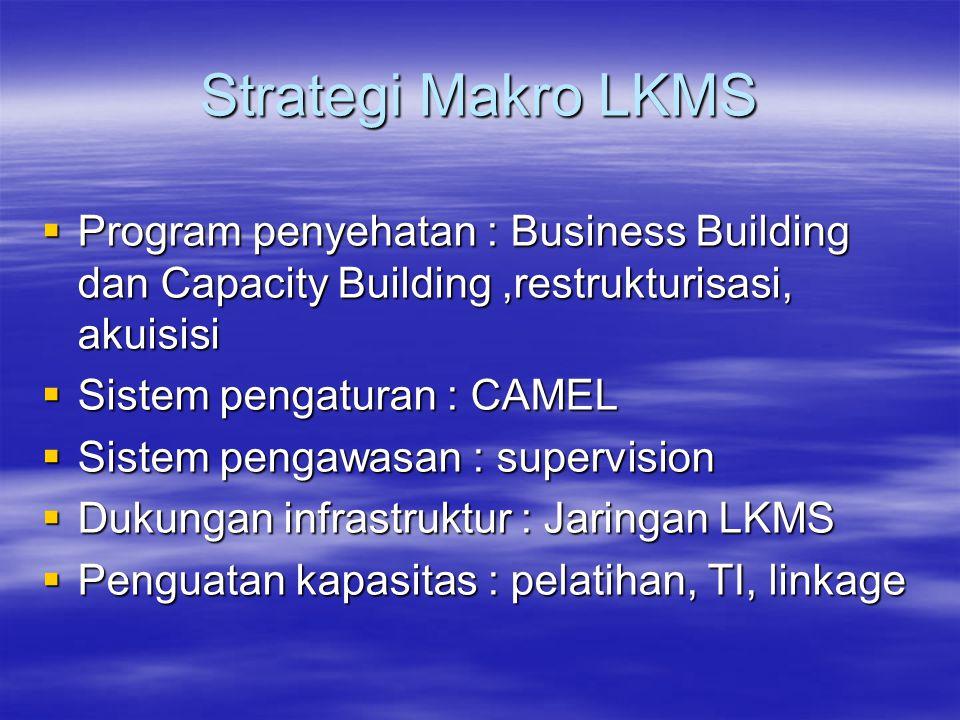 Strategi Makro LKMS  Program penyehatan : Business Building dan Capacity Building,restrukturisasi, akuisisi  Sistem pengaturan : CAMEL  Sistem peng
