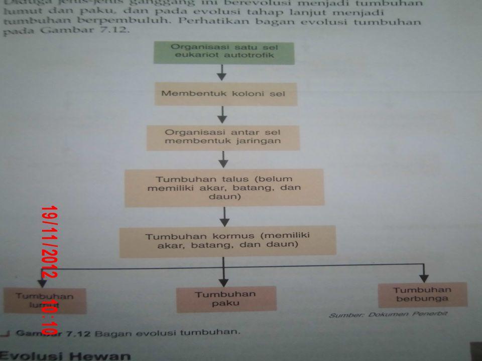 Algae diduga sebagai hasil endosimbion (halaman 240)