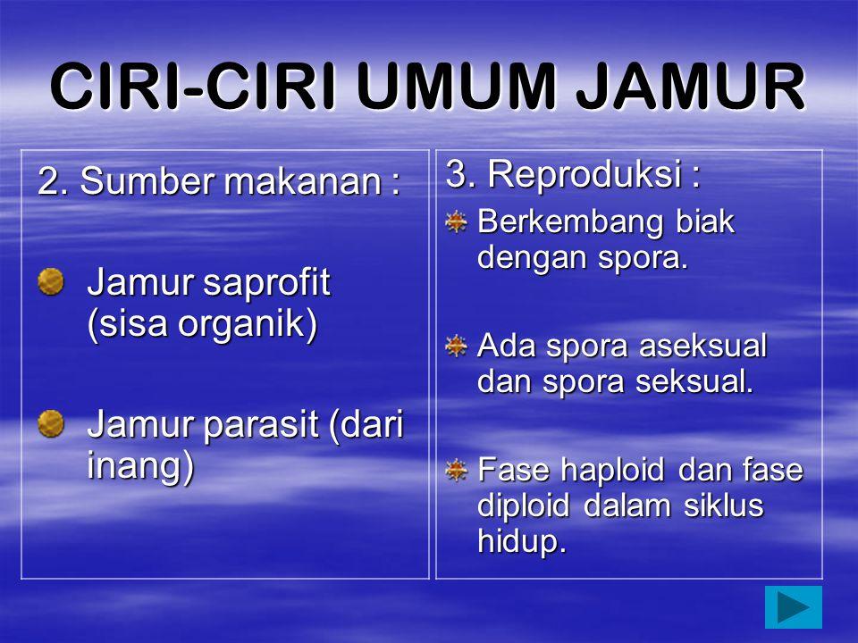 CIRI-CIRI UMUM JAMUR 1.Struktur Tubuh Eukariotik Uniseluler, multiseluler Tersusun dari hifa, membentuk miselium. Tidak memiliki klorofil