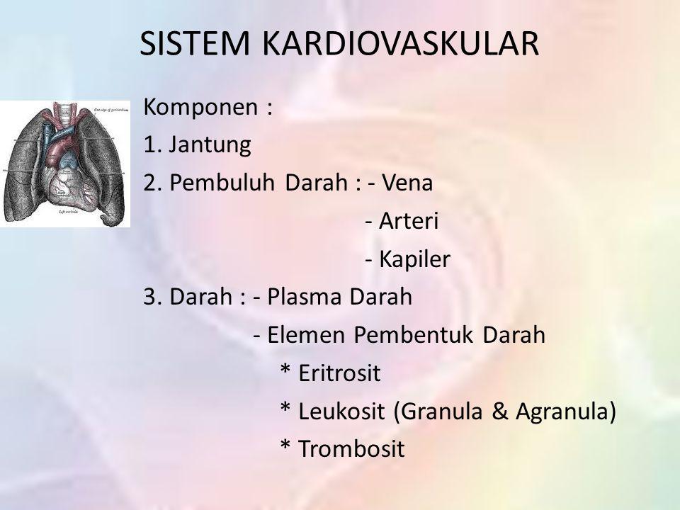 SISTEM KARDIOVASKULAR Komponen : 1.Jantung 2. Pembuluh Darah : - Vena - Arteri - Kapiler 3.