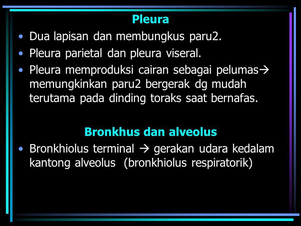 Pleura Dua lapisan dan membungkus paru2.Pleura parietal dan pleura viseral.