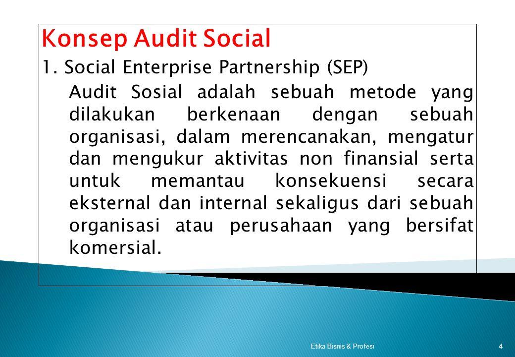 3 Berkaitan Dengan Pelaksanaan Audit Sosial, maka harus jelas hal-hal berikut : a. Aktivitas apa yang akan dilaksanakan. --- Sasaran ? a. Bagaimana ca