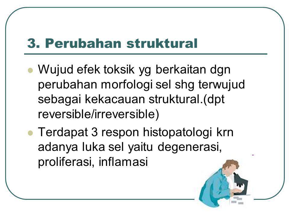 3. Perubahan struktural Wujud efek toksik yg berkaitan dgn perubahan morfologi sel shg terwujud sebagai kekacauan struktural.(dpt reversible/irreversi