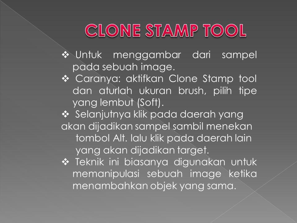  Untuk menggambar dari sampel pada sebuah image.  Caranya: aktifkan Clone Stamp tool dan aturlah ukuran brush, pilih tipe yang lembut (Soft).  Sela