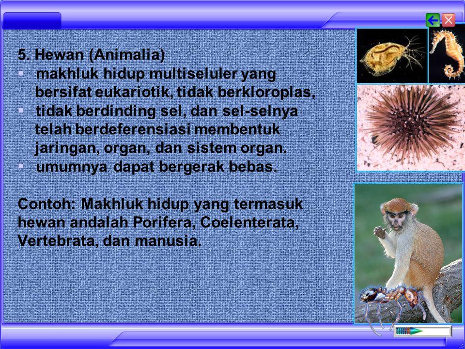 4. Tumbuhan (Plantae)  Tumbuhan adalah makhluk hidup multiseluler yang bersifat eukariotik,  berklorofil, berdinding sel dan sel-sel sudah berdefere