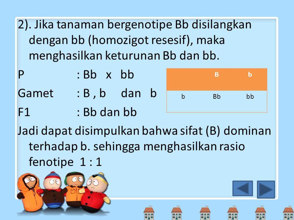 2). Jika tanaman bergenotipe Bb disilangkan dengan bb (homozigot resesif), maka menghasilkan keturunan Bb dan bb. P: Bb x bb Gamet: B, b dan b F1: Bb