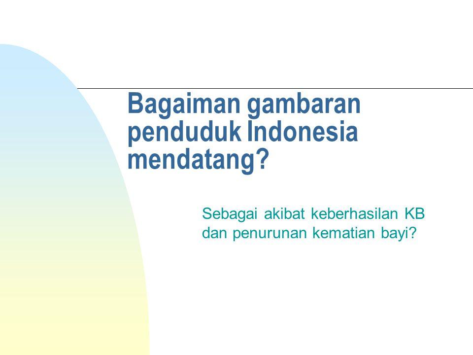 Bagaiman gambaran penduduk Indonesia mendatang.