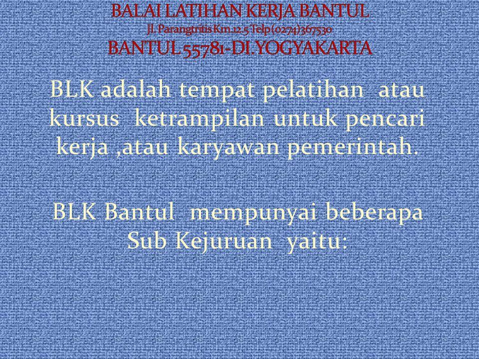 BLK adalah tempat pelatihan atau kursus ketrampilan untuk pencari kerja,atau karyawan pemerintah.