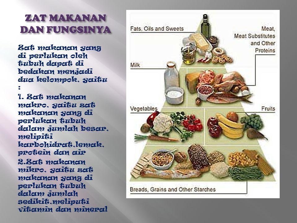 ZAT MAKANAN DAN FUNGSINYA Zat makanan yang di perlukan oleh tubuh dapat di bedakan menjadi dua kelompok, yaitu : 1. Zat makanan makro, yaitu zat makan