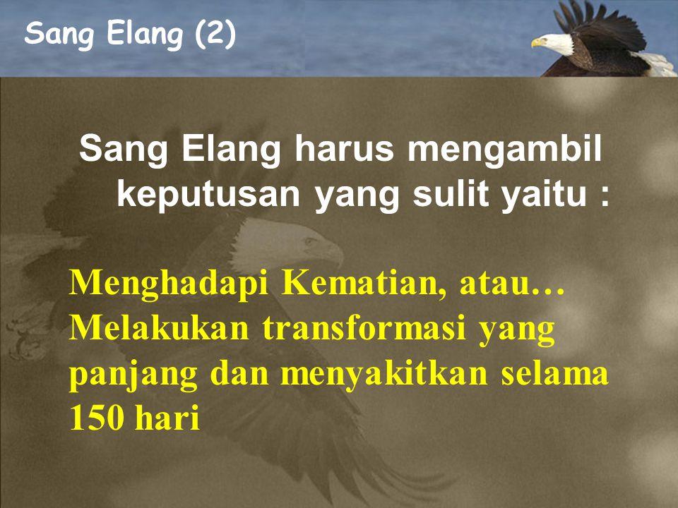Sang Elang (1) Elang dapat hidup selama 70 tahun dan merupakan unggas yang paling panjang umurnya. 1.Paruhnya sangat panjang dan melengkung hampir men