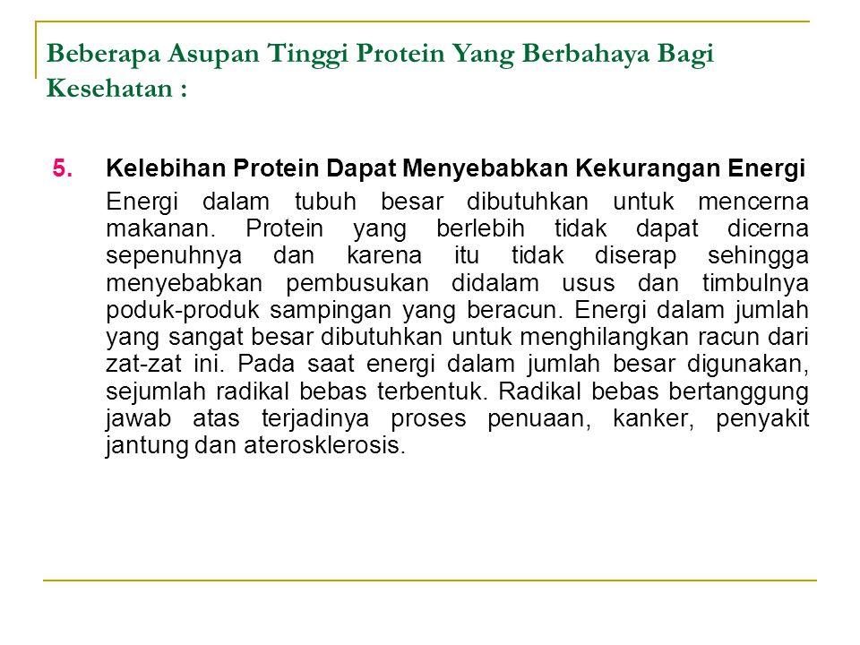 5.Kelebihan Protein Dapat Menyebabkan Kekurangan Energi Energi dalam tubuh besar dibutuhkan untuk mencerna makanan. Protein yang berlebih tidak dapat