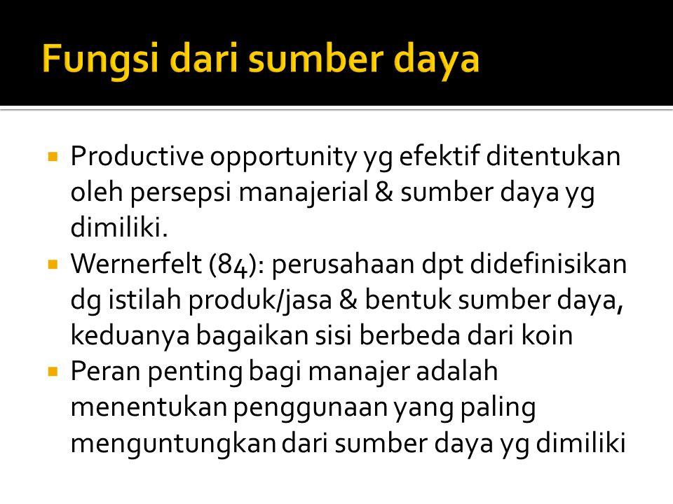  Productive opportunity yg efektif ditentukan oleh persepsi manajerial & sumber daya yg dimiliki.  Wernerfelt (84): perusahaan dpt didefinisikan dg