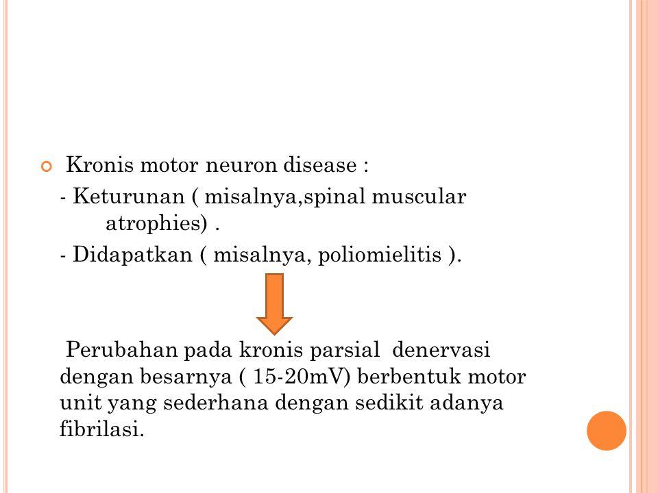 Kronis motor neuron disease : - Keturunan ( misalnya,spinal muscular atrophies). - Didapatkan ( misalnya, poliomielitis ). Perubahan pada kronis parsi