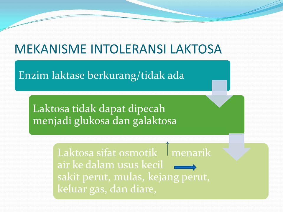 MEKANISME INTOLERANSI LAKTOSA Enzim laktase berkurang/tidak ada Laktosa tidak dapat dipecah menjadi glukosa dan galaktosa Laktosa sifat osmotik menarik air ke dalam usus kecil sakit perut, mulas, kejang perut, keluar gas, dan diare,