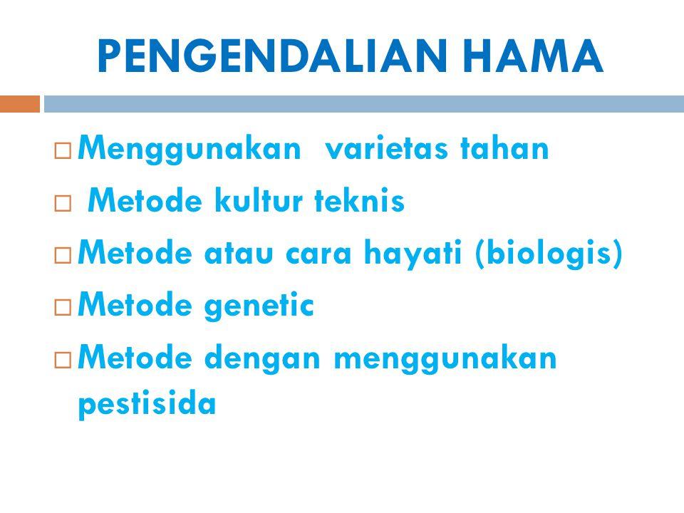 PENGENDALIAN HAMA  Menggunakan varietas tahan  Metode kultur teknis  Metode atau cara hayati (biologis)  Metode genetic  Metode dengan menggunaka