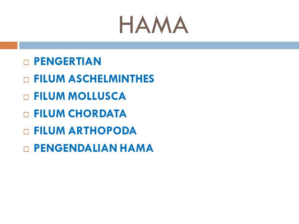 PENGERTIAN  Hama merupakan semua binatang yang mengganggu dan merugikan manusia.