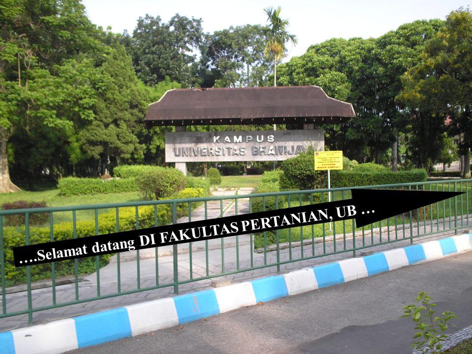 FAKULTAS PERTANIAN, UB 43 ORGANISASI FP UNIBRAW Kajur BP : Dr.