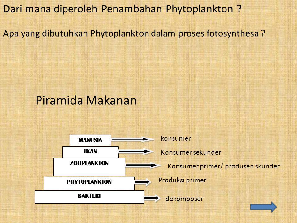 Dari mana diperoleh Penambahan Phytoplankton ? Apa yang dibutuhkan Phytoplankton dalam proses fotosynthesa ? MANUSIA IKAN ZOOPLANKTON PHYTOPLANKTON BA